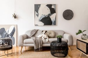 Аренда домашней мебели