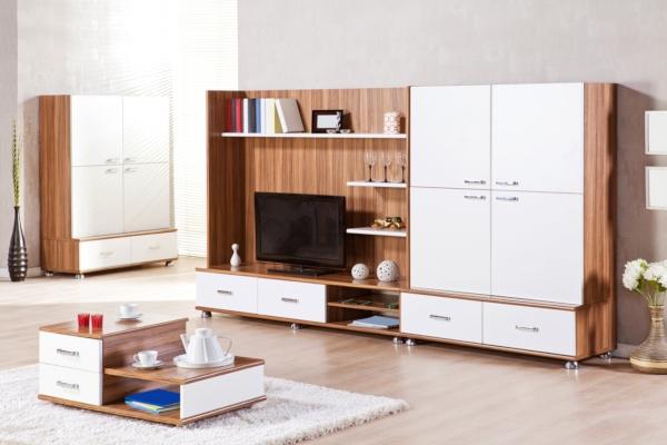Многоцелевой дизайн гостиной