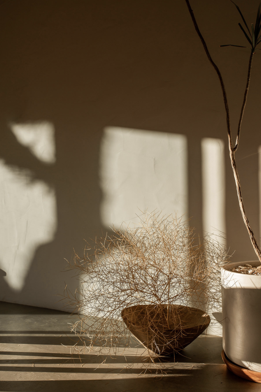 современный тур по глинобитному дому в пустыне