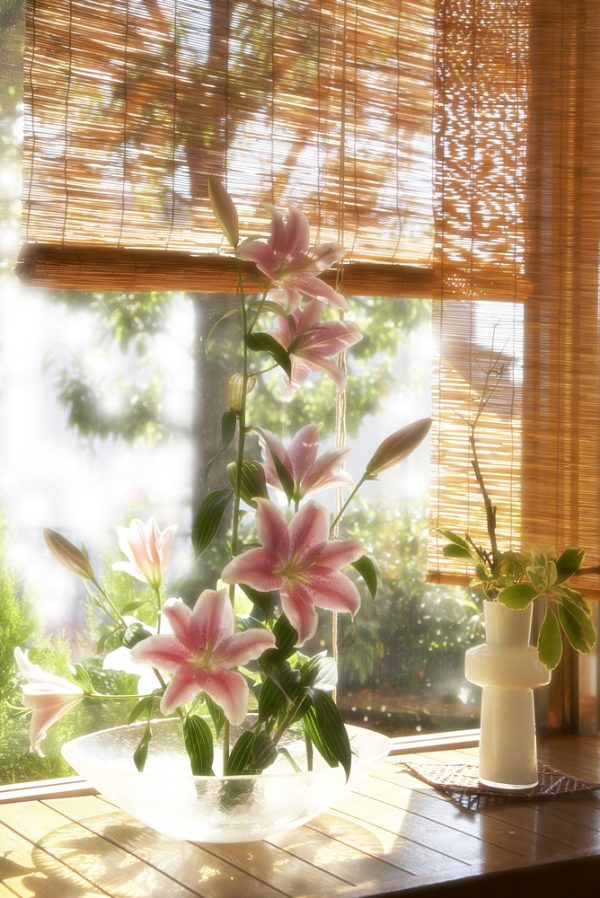 бамбуковые жалюзи для оконных отделок