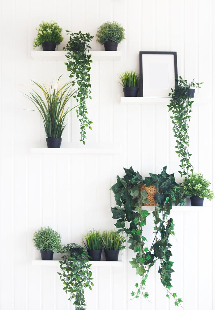 Идеи плавающих полок для растений
